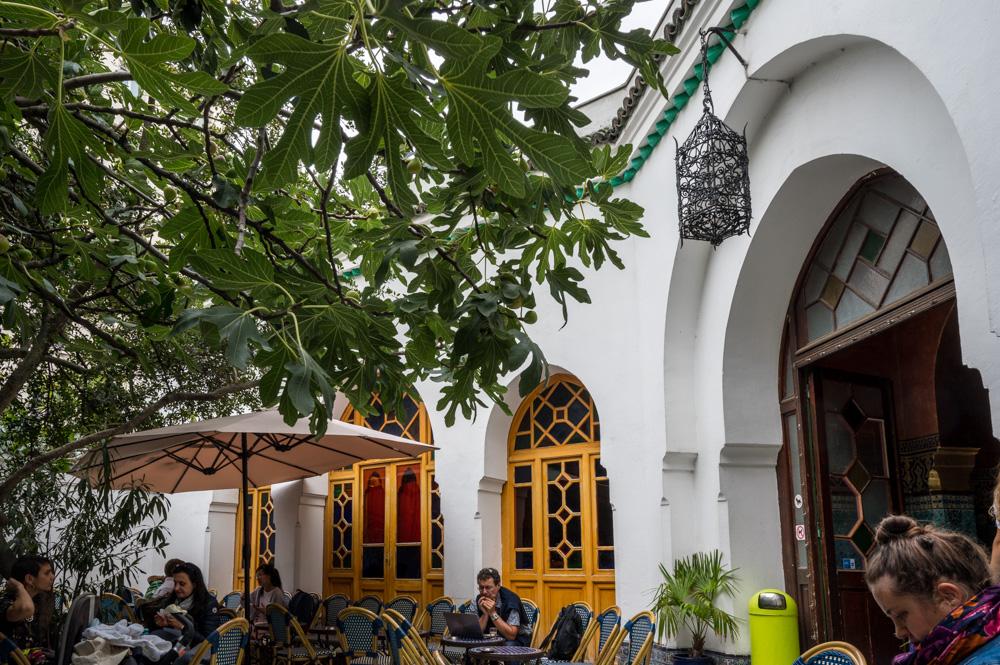 Im Garten der Moschee