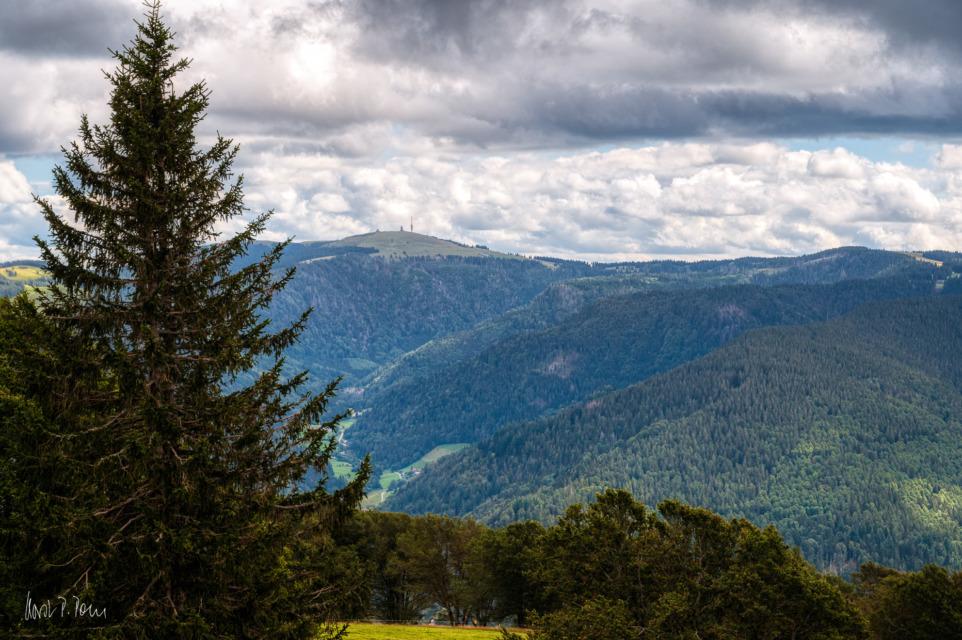 Blick hinüber zum 10 km entfernten Feldberg (1493 m)