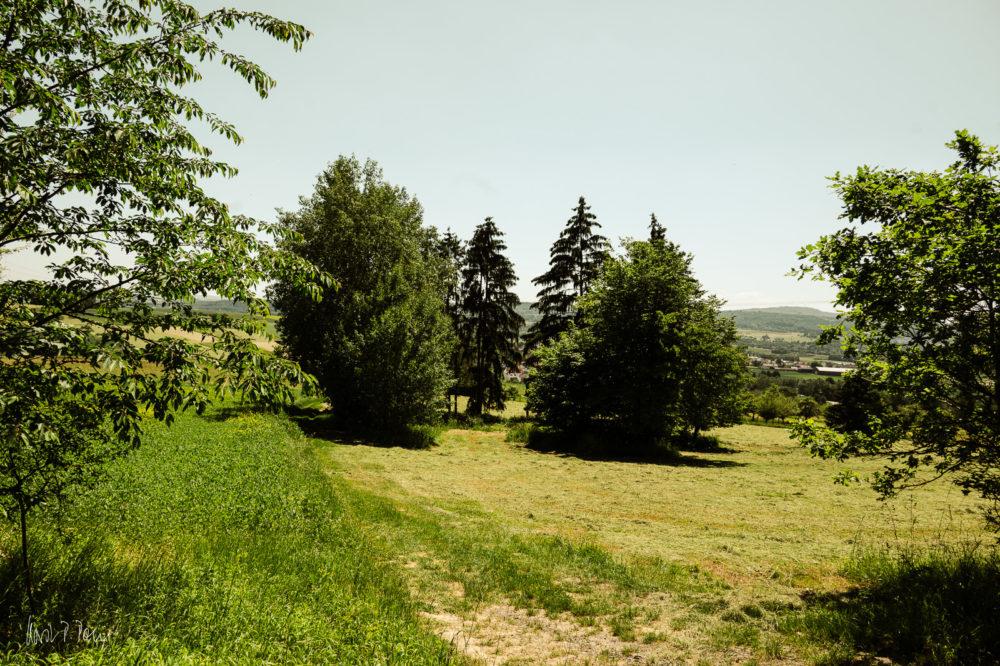 Blick Richtung Waldgirmes