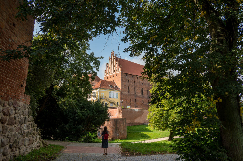 Burg Allenstein